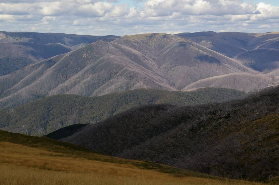 View north across Great Dividing Range from Mt Fainter